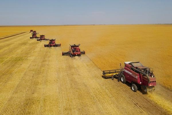 Андрей Бочаров: «Задача – собрать порядка 4 млн тонн зерна – будет выполнена»
