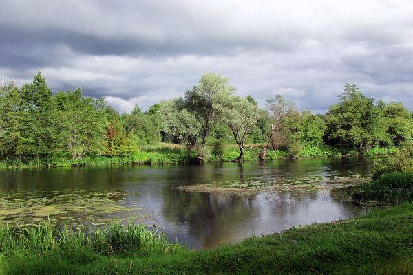 Волгоградцев приглашают поддержать регион в развитии экотуризма