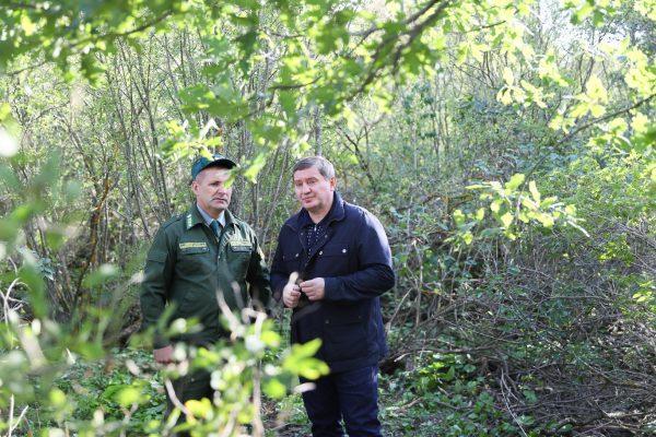 Андрей Бочаров о создании государственных лесозащитных полос: «Пришло время, когда необходимо принимать решение и действовать»