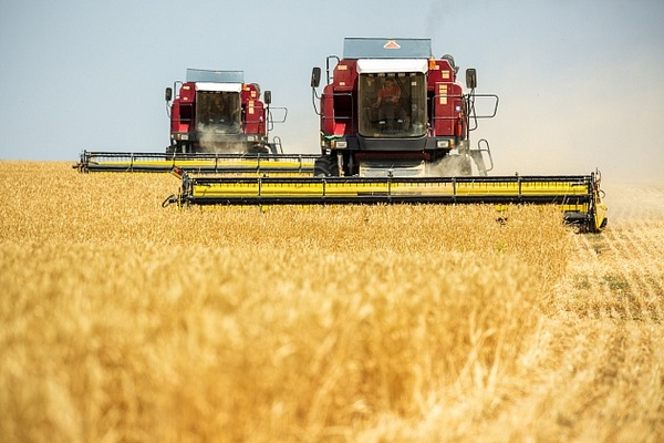 Аграрии Волгоградской области собрали первый миллион тонн зерна